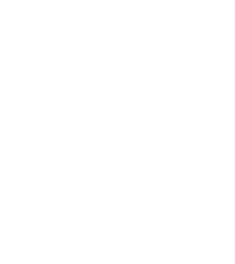 Ryerson Model United Nations