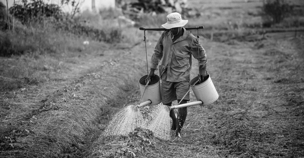watering-watering-can-man-vietnam-162637.jpg