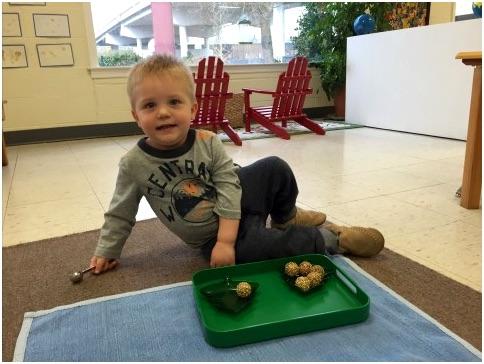 Montessori-Chattanooga-Admissions.jpg
