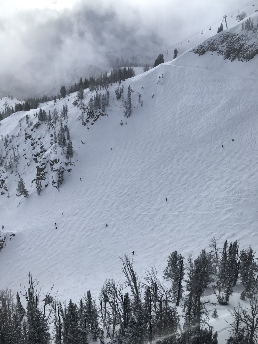 Not exactly what I was facing, but this is what it felt like. Jackson Hole, Wyoming.