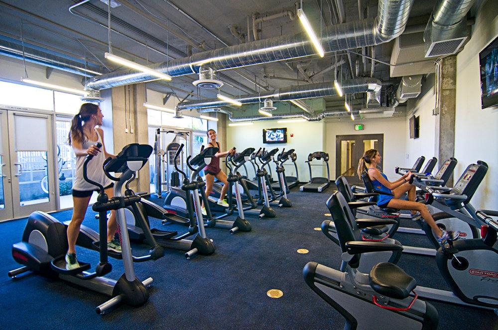 8. Gym.jpg
