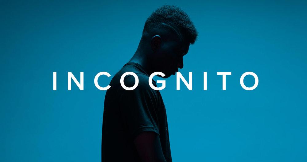 2018-10-01_LVC_Incognito - Series Art_V2.jpg