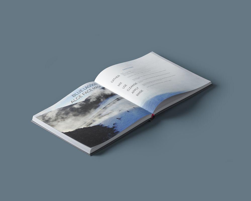 BLUE LAGOON BOOK MOCK.jpg