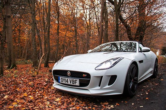 Changing Jaguars brand image. Perhaps a bit drier than normal, but the pictures are pretty. Www.supaj005h.com for the full article #jaguarftype #jaguar #cars #autumn #photography #SUPAJ005H
