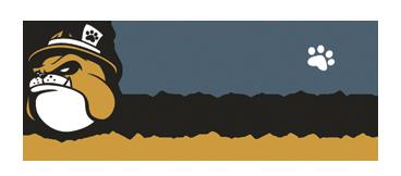 BulldogReporter-logo1.png