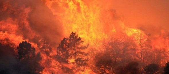 CAL-Wildfire-750x330