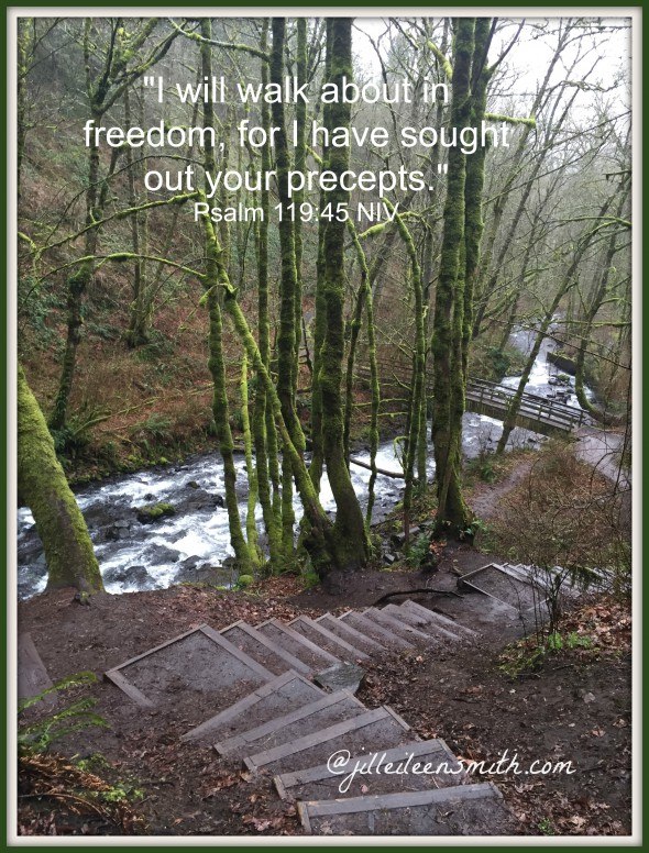 Walk in freedom verse and pic