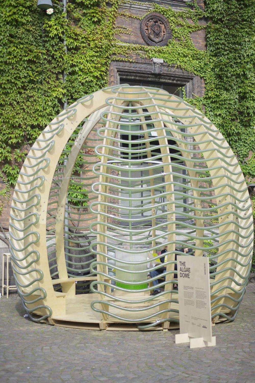 Algae Dome2.jpg