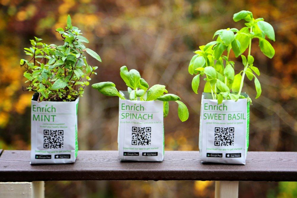 Enrich Plants.jpg