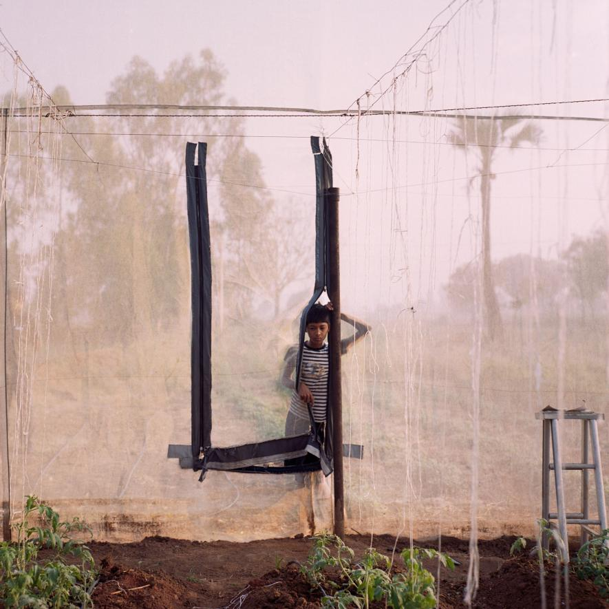Vikram Bhavanth, 13, peers through the family's greenhouse. Kheyti collaborated with engineering students at Northwestern University and Stanford University's Design for Extreme Affordability course to develop a prototype. After multiple iterations, they settled on a metal-frame structure with an overlay of shade netting and insect-proof netting on the sides.