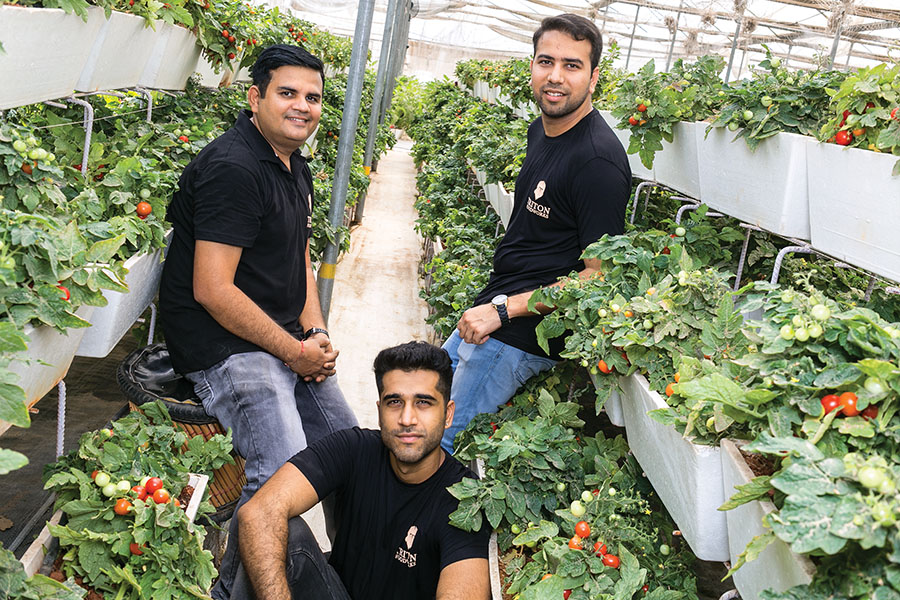 Two of Triton Foodworks' five co-founders quit after a brush with Delhi's municipal authorities, but Deepak Kukreja (sitting),    Ullas Samrat  (left) and Dhruv Khanna (right) decided to stay put