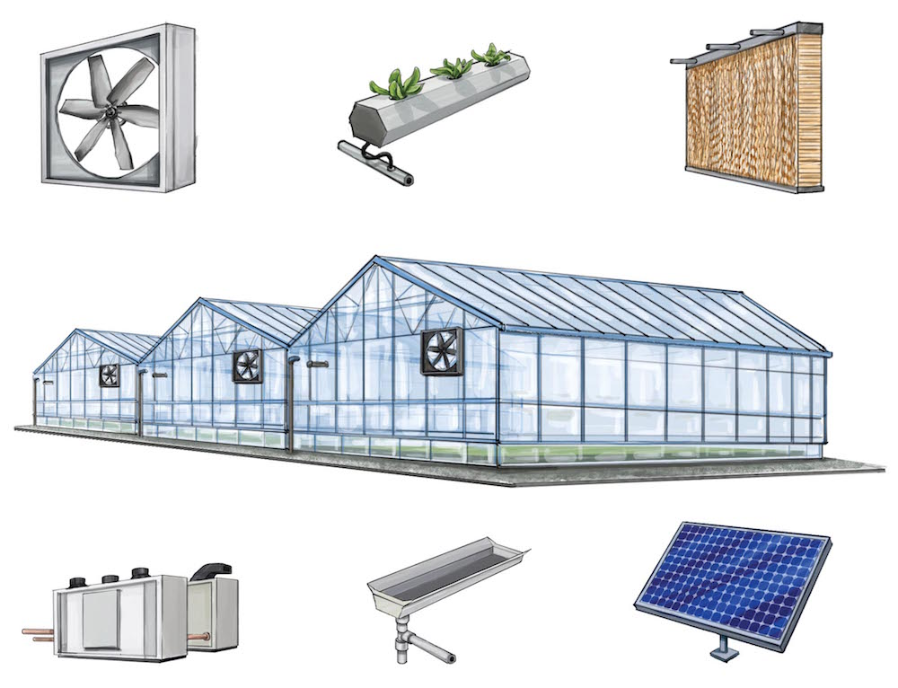 In a hydroponic set-up, plants get the nutrients they need through irrigation water. The process eliminates soil and increases yield. For this process to be successful, ventilation and temperature modulation are key. Solar panels provide renewable energy to power irrigation pumps and ventilation systems, and rainwater is captured in roof tanks for use as irrigation in dry periods. Water is constantly recirculated in a hydroponic system, wasting none. Illustration by Ellaphant in the Room.