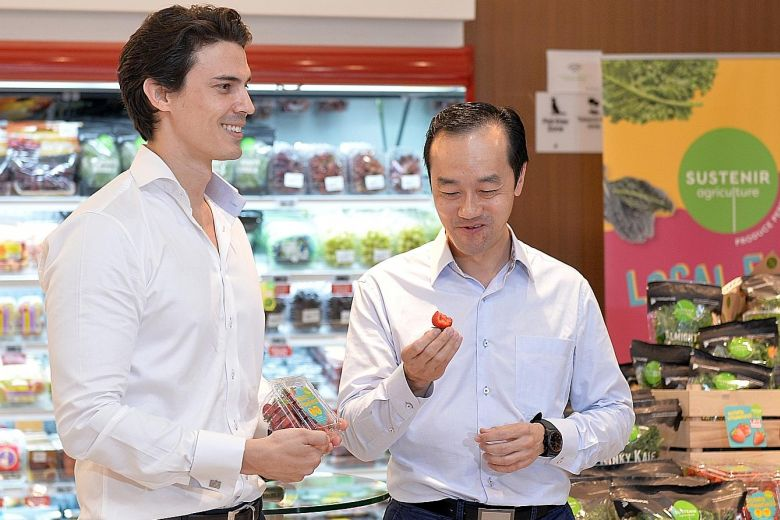 Sustenir Agriculture CEO Benjamin Swan offering Dr. Koh Poh Koon a taste of locally-grown strawberries, which are on sale at $12 a punnet.