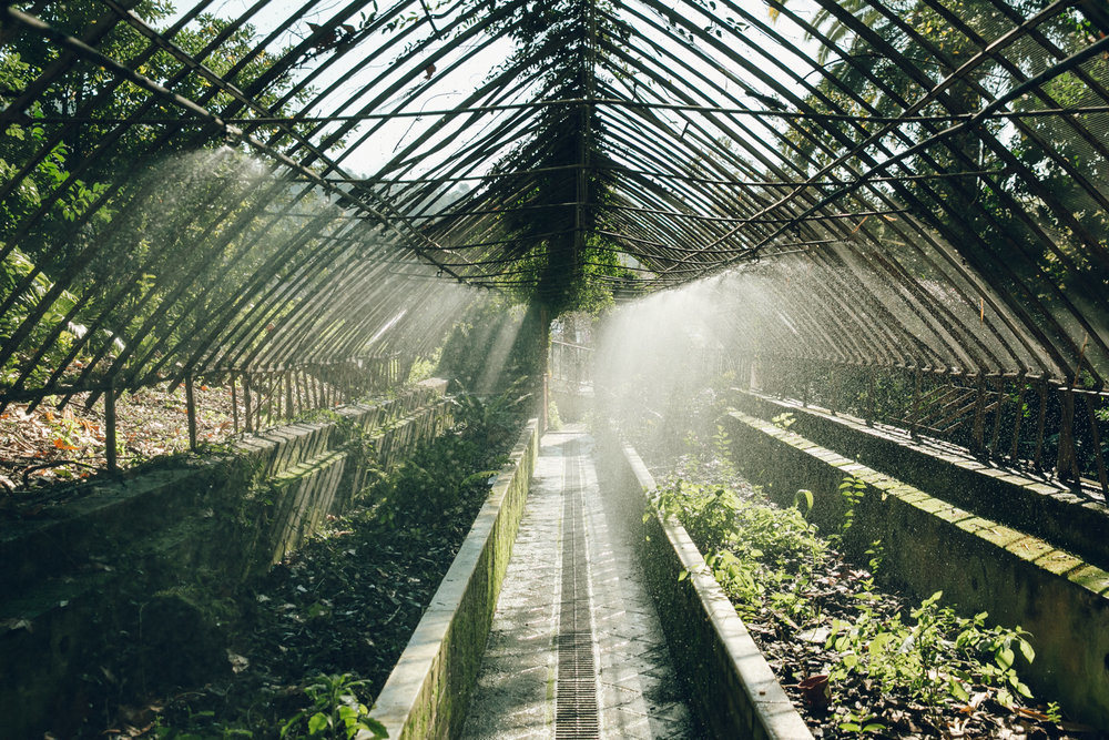 THE SEARCH FOR THE WORLD'S MOST ENCHANTING GREENHOUSES.jpg