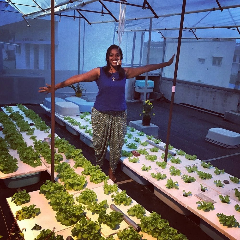 Ann Vinya in her greenhouse.