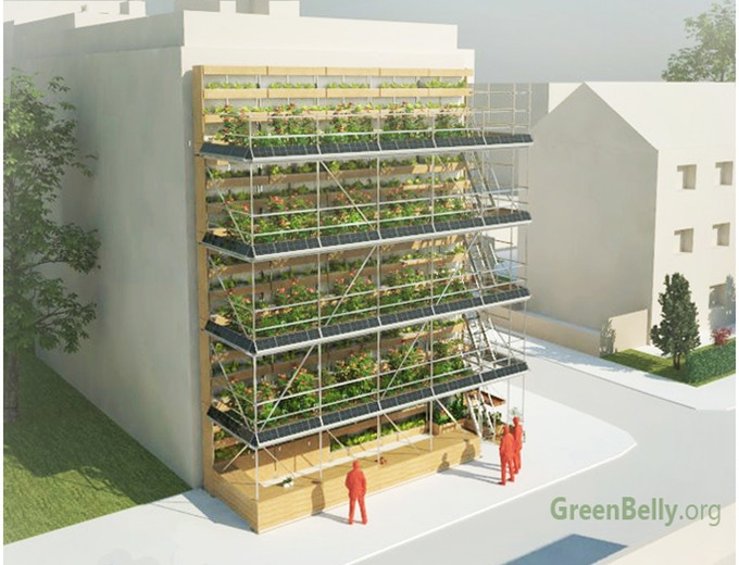 greenbelly vertical farm 2.jpg