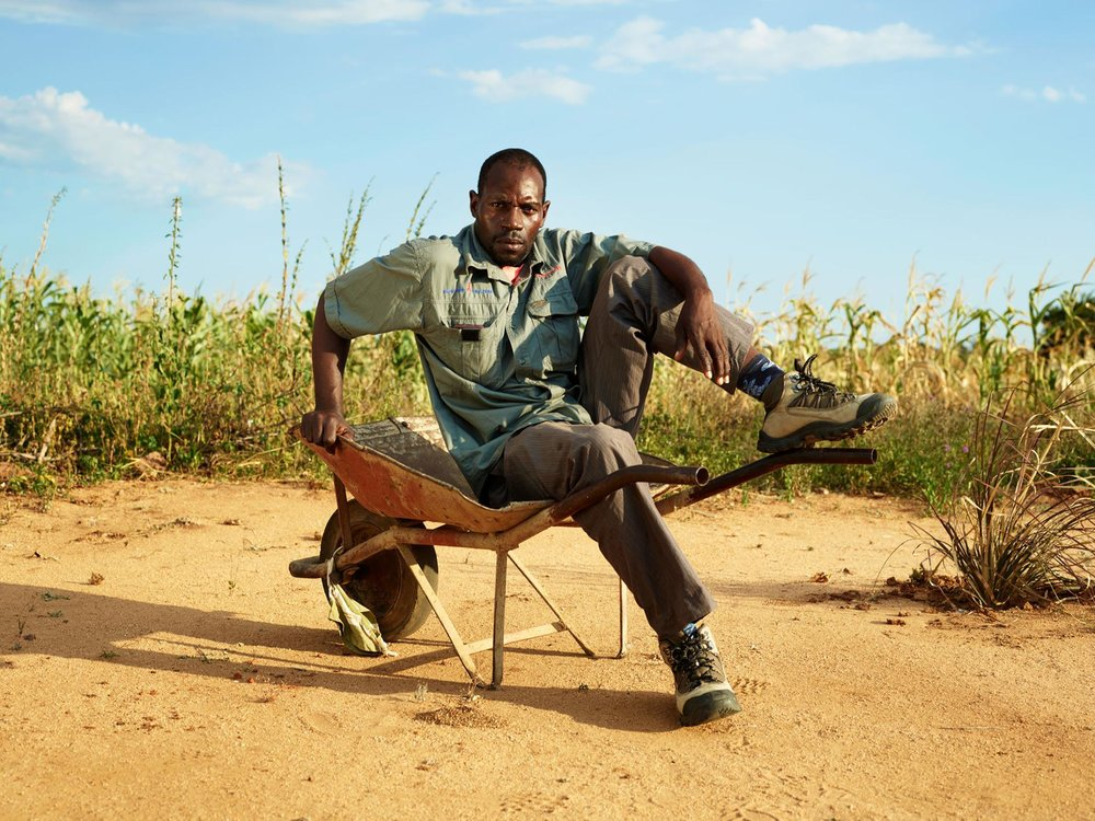 Drought in Zimbabwe has forced farmers like Austin Mugiya to look for new crops that can endure tough conditions.