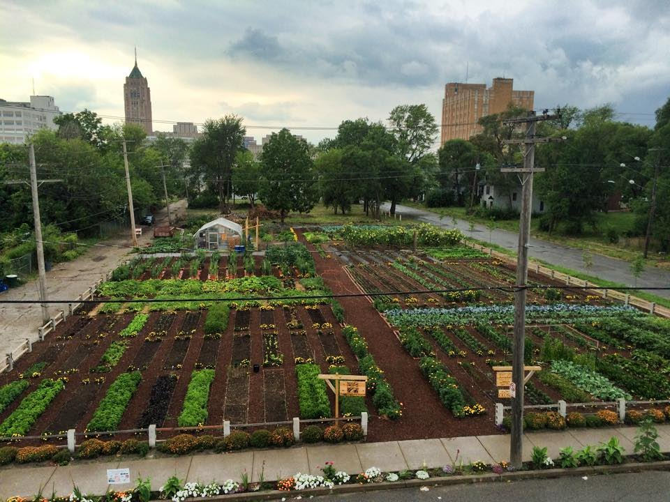 The Michigan Urban Farming Initiative's (MUFI) two-acre farm in Detroit's North End.