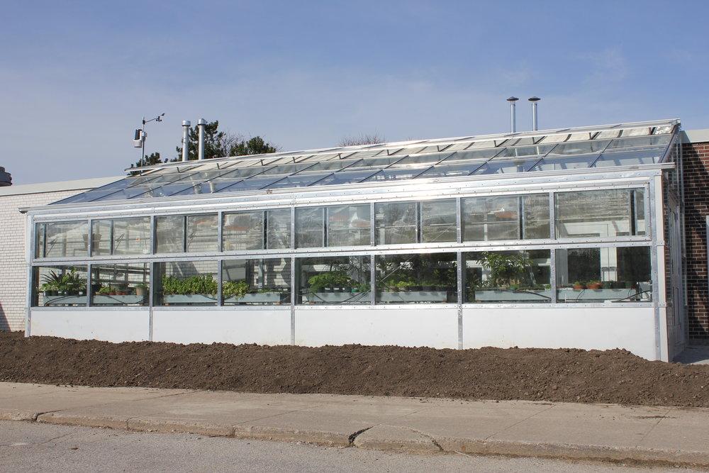 dan kunanec toronto greenhouse.JPG