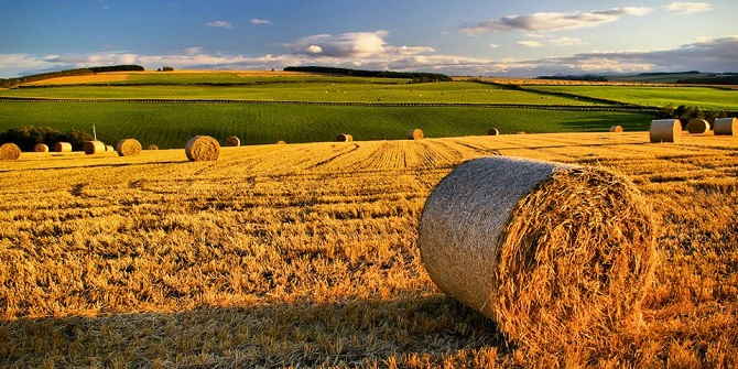 Harvested fields in Scotland. Credit:  Gordon Robertson