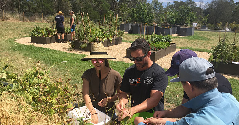 Volunteers at  Sydney City Farm  - an urban agriculture project started by the City of Sydney in Sydney Park.