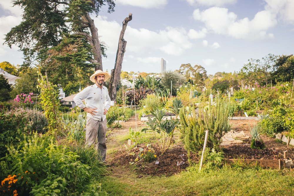 Kelmarna Gardens  — a 4.5 acre city-owned farm and organic community garden in Ponsonby, Auckland — is dedicated to building a healthy community and environment and promoting sustainable living. (Image courtesy of EcoMatters Environmental Trust)