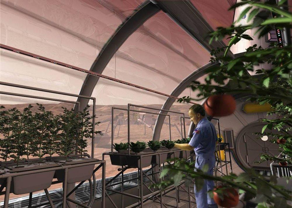 nasas-vision-of-hydroponics-on-mars.jpeg