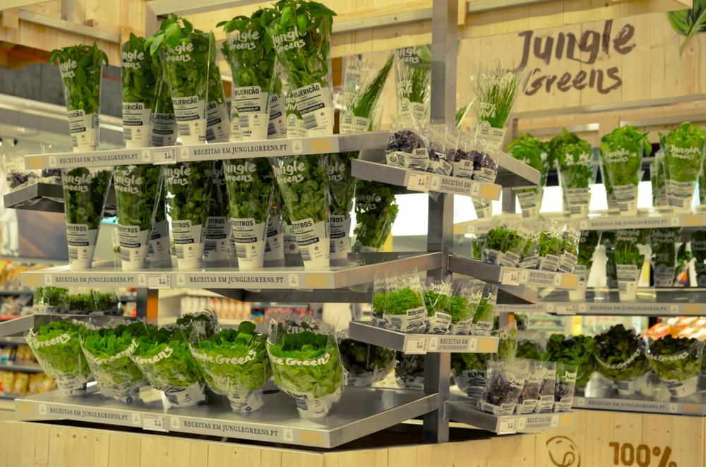 Jungle Green Live Plants 2.png