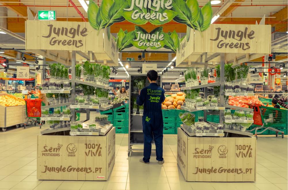 Jungle Green Live Plants 3.png