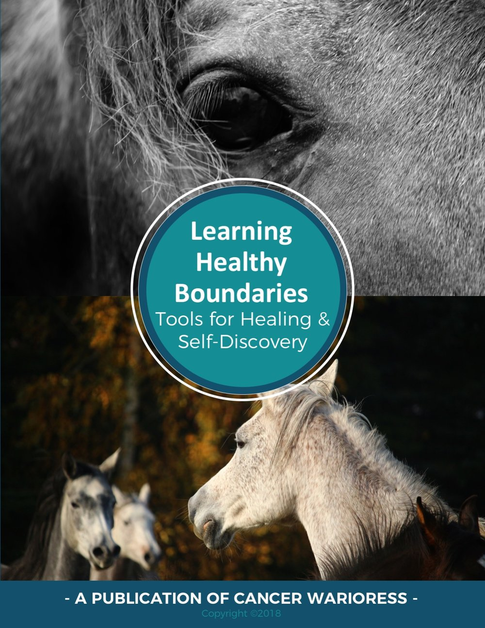 Learning Healthy Boundaries eBook - Cancer Warrioress - Copyright 2018.jpg