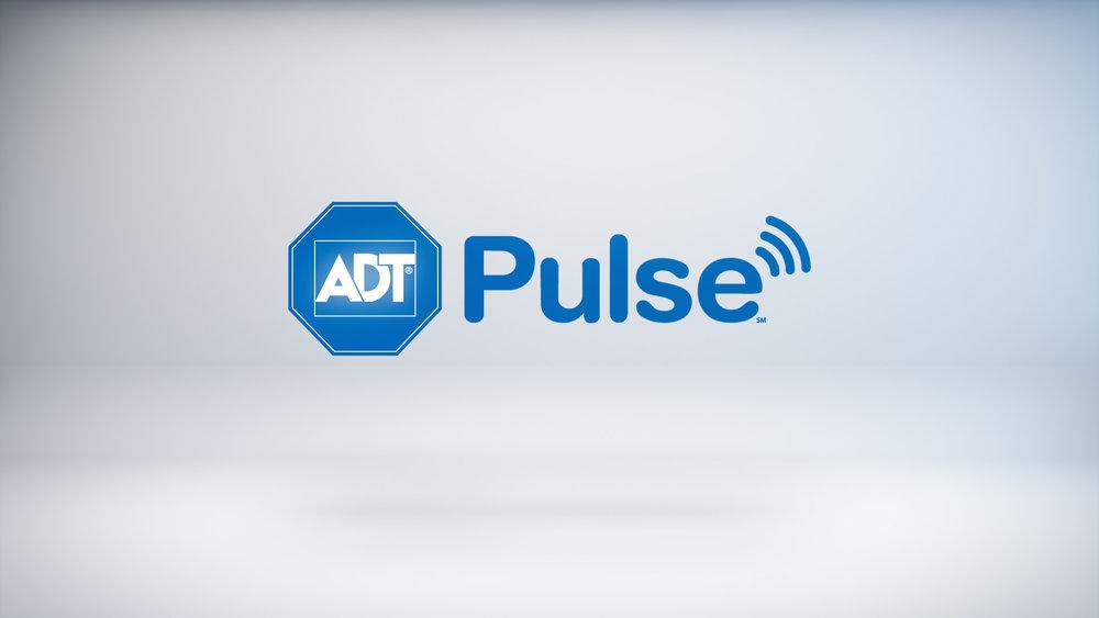ADT-Pulse-snaps-12.jpg