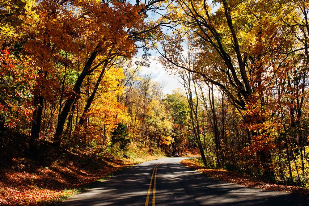 FIELD TRIP - Asheville, North Carolina