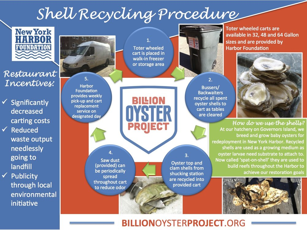 Shell-Recycling-procedure-2-copy.jpg