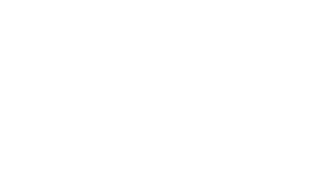 NYOW logo WHITE w dates REGULAR.png