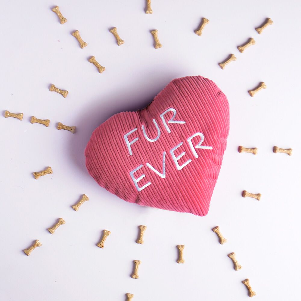 BubblyPaws_HeartB.jpg