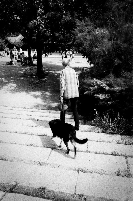 11 Black&White_preview.jpg