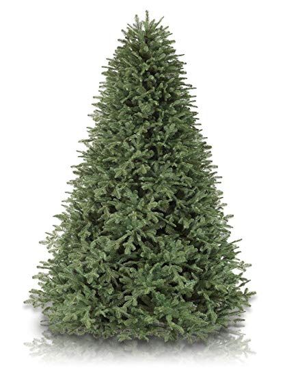 1. Balsam Fir - The balsam fir is an evergreen tree best known for its conical shape and dense, dark-green leaves that are flat and needle-like. The leaves of the balsam fir also tend to have hints of shining silvery-white and are commonly used for Christmas wreaths and Christmas bouquets. This evergreen tree not only looks good, but smells good too. Giving off that spicy Christmas scent only makes it an even more popular Christmas tree choice. This particular fir varietal is small- to medium-sized and grows to heights of up to 66 feet tall.