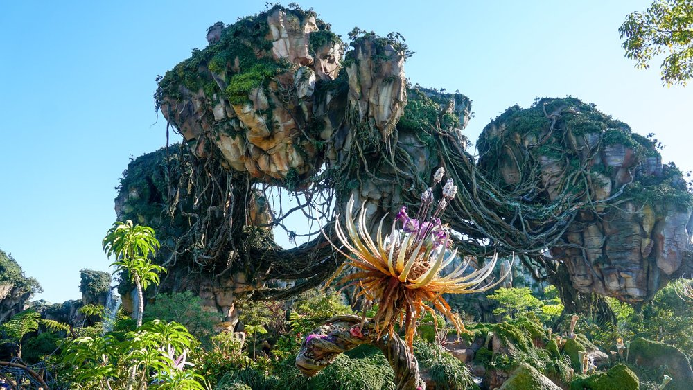 Valley_of_Mo'ara_in_Pandora_–_The_World_of_Avatar.jpeg