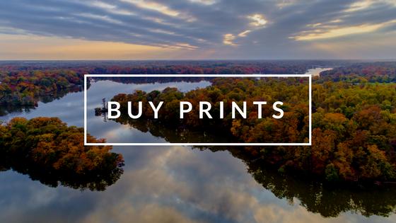 Buy_Prints.png