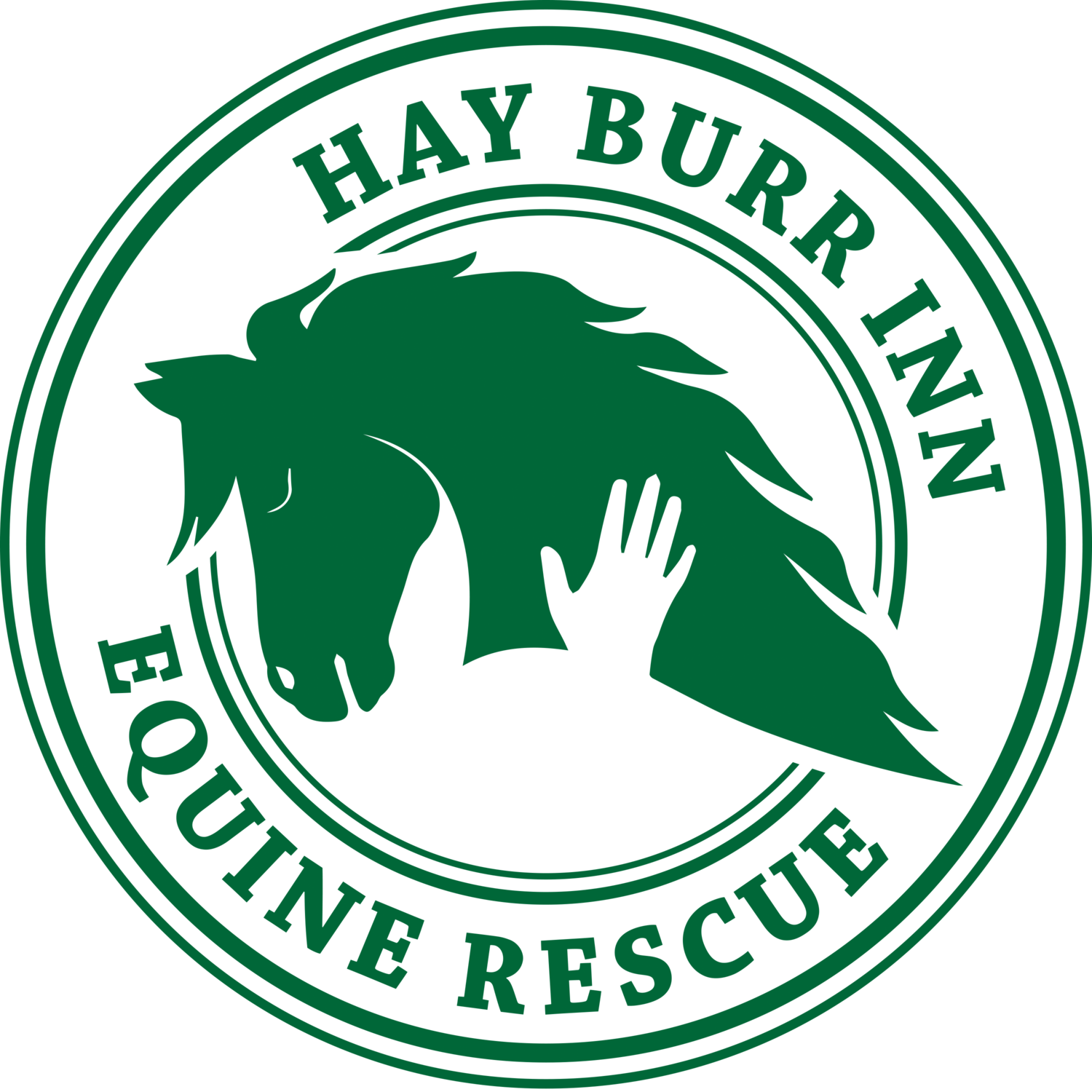 Hay Burr Inn Equine Rescue