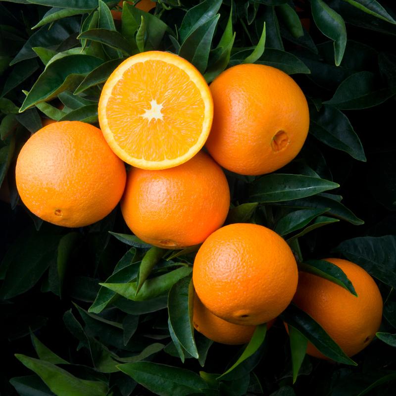 W-74-Naval-Oranges.jpg
