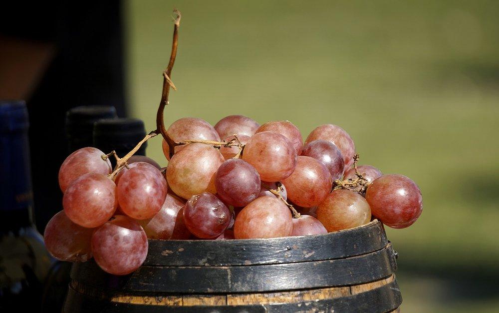 Crimson Grapes.jpg