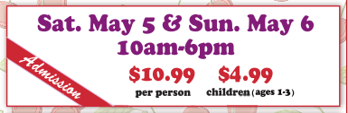 Cherryfest Pricing - Copy.PNG