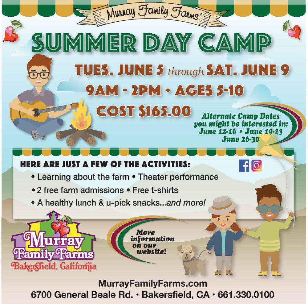 Murray Summer Camp instagram.jpg