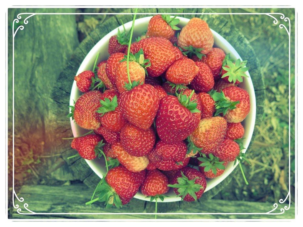 fruit-3247495_1280.jpg