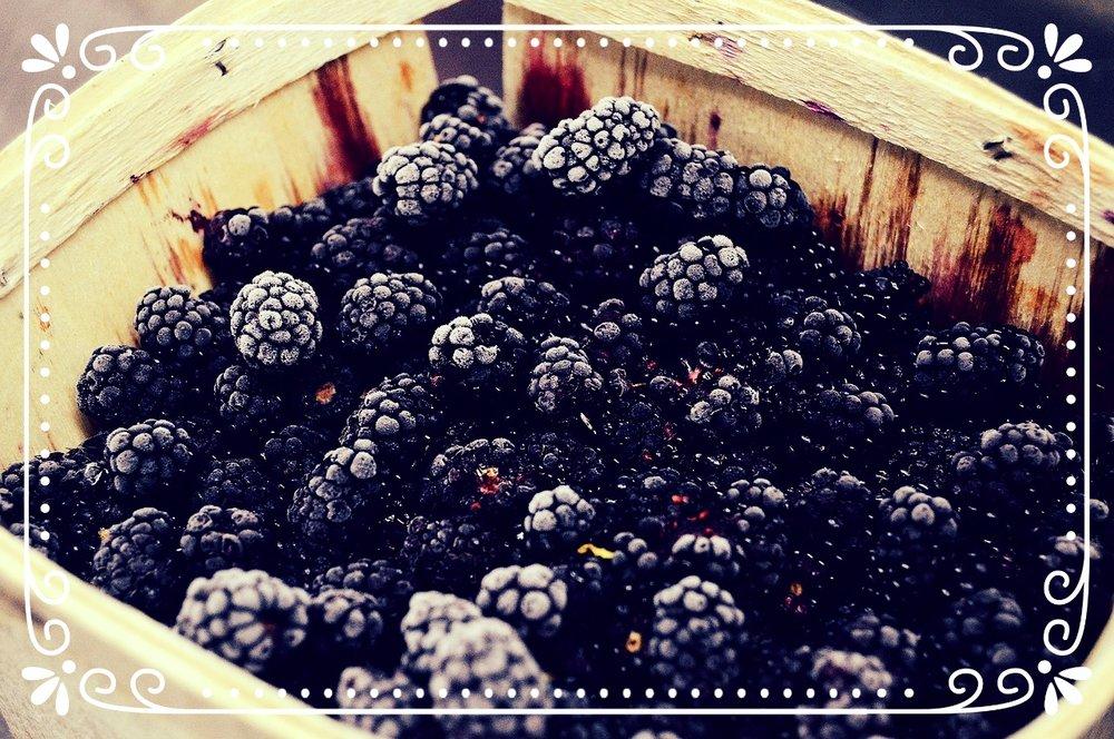 berry-1867078_1280.jpg