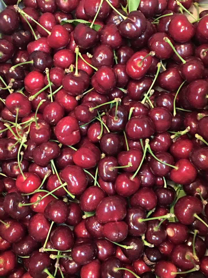 cherry coverall.jpg
