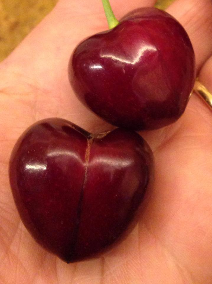 cherry tulare.jpg