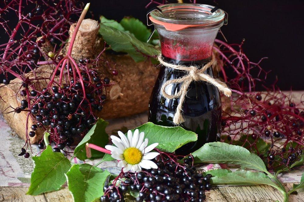 Fruit Spotlight - Elderberries & Elderflowers