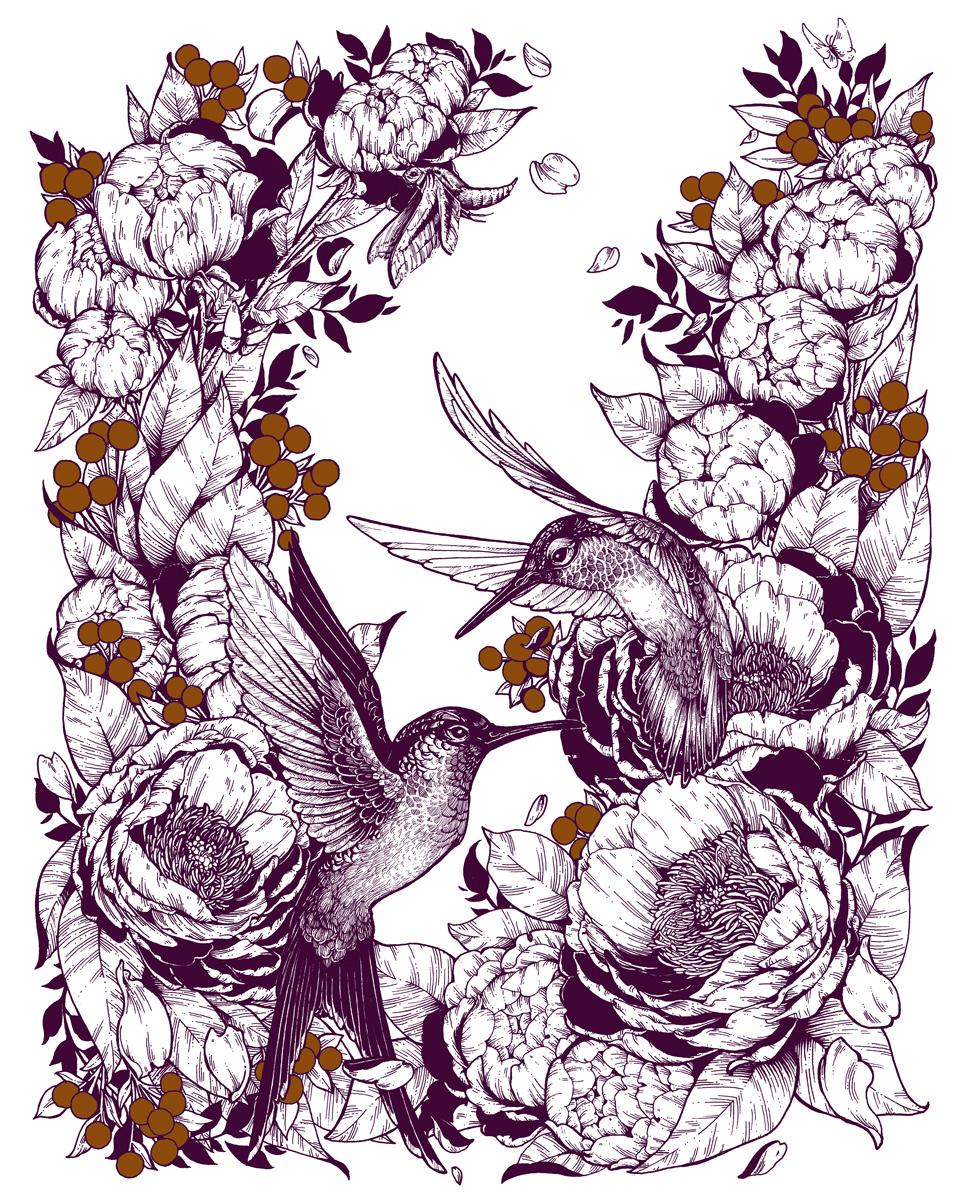 Michel-Roger-Hummingbirds-Erica-Williams.jpg